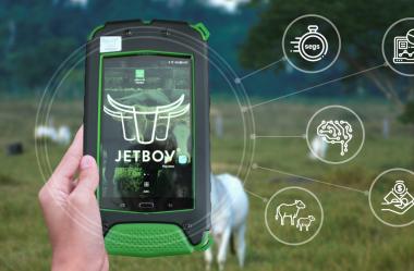 Por que escolher o JetBov e não outro sistema de gestão para fazendas de gado de corte